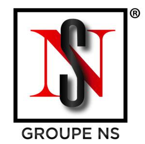 Logo Groupe NS